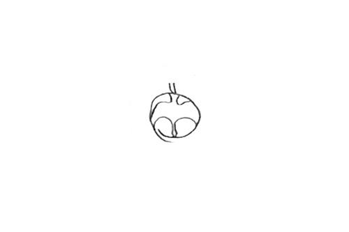 Proposition retenue de logo pour Albane Deschamp